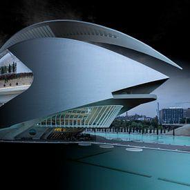 Calatrava's Opera huis in Valencia van Rene Siebring
