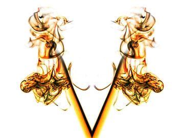 Rook Fantasy 5 van Helma Tielemans