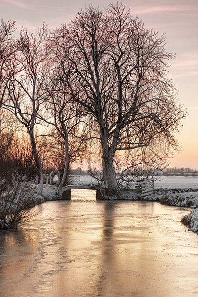 Winter in Nederland van Rob van der Teen