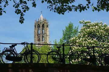 Fietsen op een brug in Utrecht  von Michel van Kooten