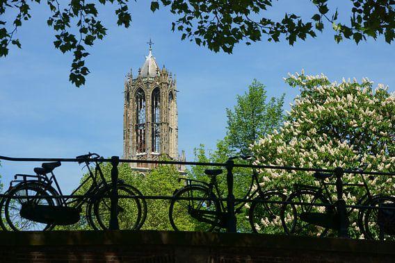 Fietsen voor de Domtoren in Utrecht