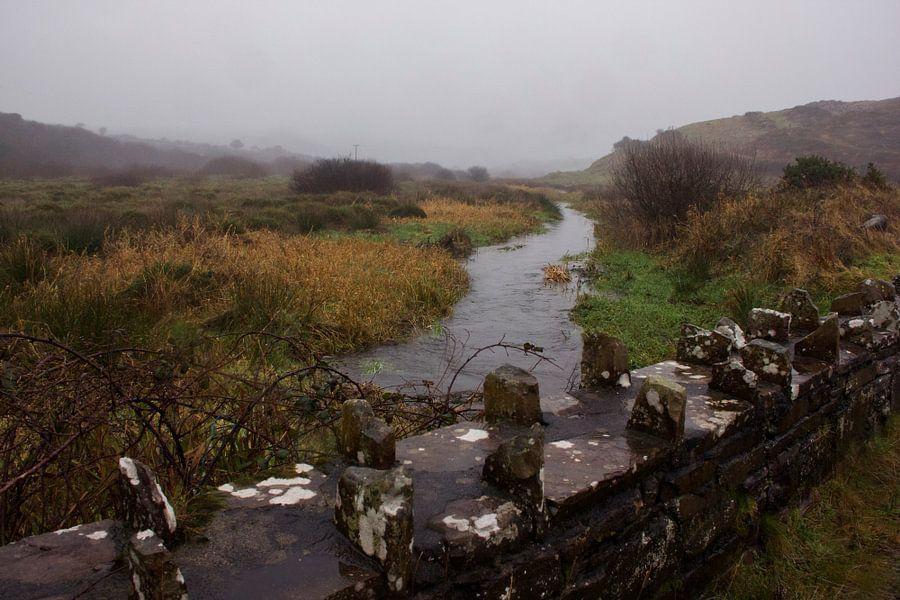 Ierse rivier