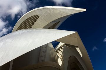 Valencia - City of Arts and Sciences von Bas Bakema