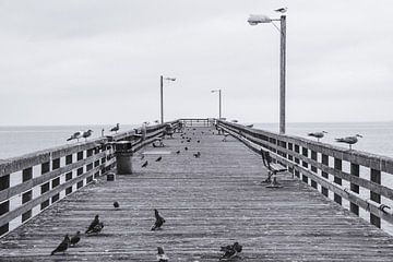 Goleta Pier von Bas Koster