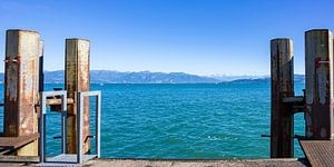 Looking over Lake Constance