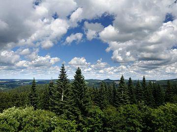 Die Eifel vom Aussichtspunkt Dietzenley 2 von Jörg Hausmann