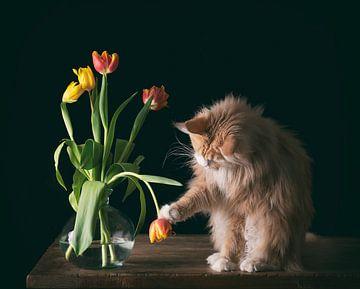 Wodan und seine Tulpen von mirka koot