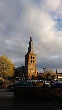 De toren van Barneveld van Wilbert Van Veldhuizen