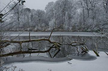 Winters landschap von Remco Swiers