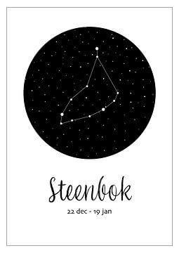 Sternbild Steinbock, niederländisch von Nynke Altenburg