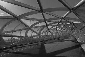(fiets) brug ' Groene verbinding' zwart/wit perspectief 3