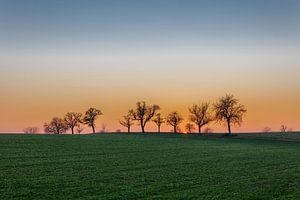Kraichgau sunset von Uwe Ulrich Grün