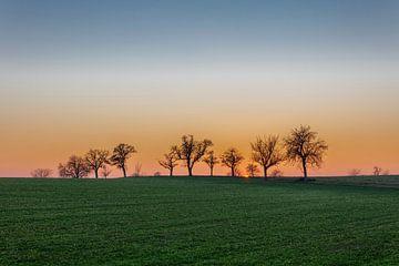 Kraichgau sunset