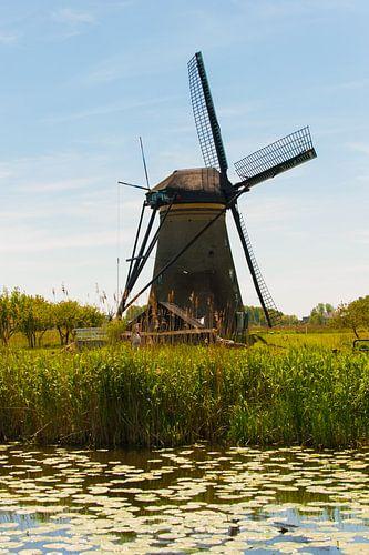 Windmill van