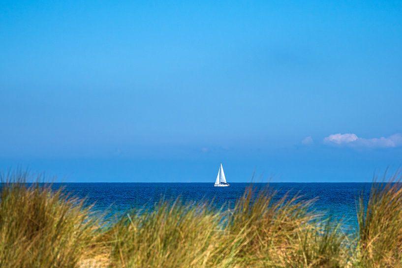 Blick auf die Ostsee mit Segelboot und Düne von Rico Ködder