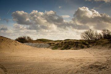 Duinen aan de Nederlandse kust van