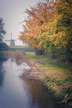 Colors in the mist (Bleiswijk) van