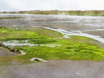 Zwart zand bij Djupivogur, IJsland van Frans Blok