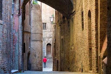 Wanderer in Siena von Rob van Esch