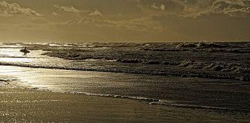 Texel - Surfen van foto zandwerk