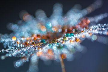Macrophoto de gouttes colorées sur une peluche