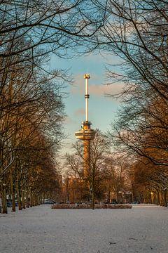De Euromast - winter 8 van Nuance Beeld