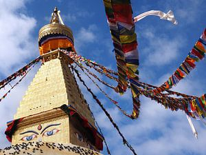 Kleurrijke gebedsvlaggen Bouddhanath Stupa van Ryan FKJ