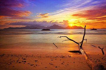 Kleuren van de Seychellen van
