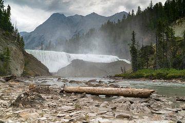 Wapta Falls des Kicking Horse river, Yoho National Park, British Columbia, Kanada von Alexander Ludwig