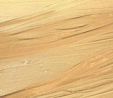 Strand van frans bouwmeester