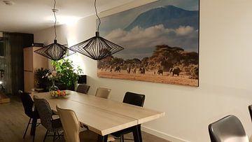 Kundenfoto: Afrikanische Elefanten am Kilimanjaro von Nature in Stock