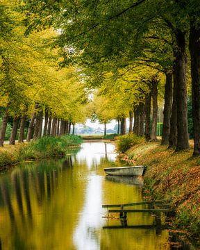 Herfst, Bos