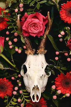Ode aan de doden - Herten gewei van Nikki Segers