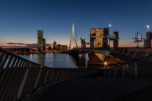 010 Rise | Erasmusbrug, Rotterdam van