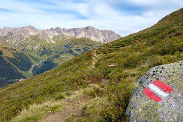 Alpenrosenweg, St. Anton am Arlberg von Johan Vanbockryck