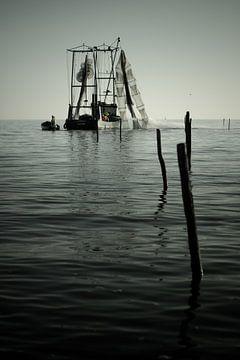 Vissersboot op Hoornse Hop van Mark Veldman