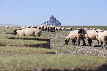 Le Mont Saint Michel van Peter van Rooij
