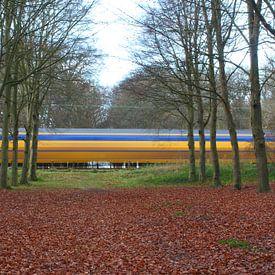 Nederlandse trein door bos. van Paul Franke