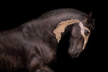 Fries paard met bladgoud van Kim van Beveren