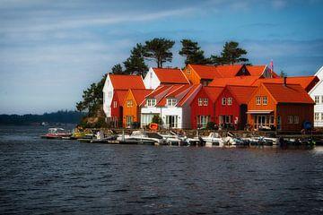 Noorwegen van Evy De Wit