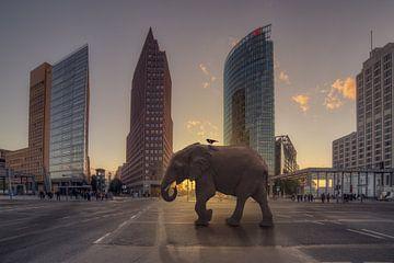 Olifant op de Potsdamer Platz van Salke Hartung