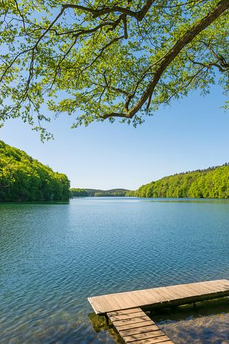 Summer by the lake van Martin Wasilewski