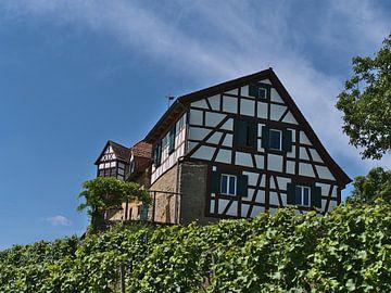 Vakwerk op de wijngaard van Timon Schneider