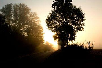Het licht van een nieuwe dag. van