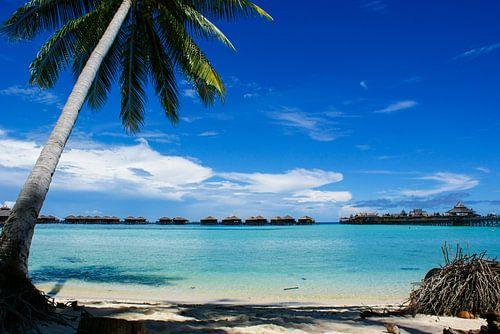 Mabul Island Resort, Borneo