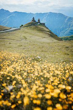 Een zee aan bloemen die naar een prachtig klooster leidt in de Kaukasus bergen van Georgie van Milene van Arendonk