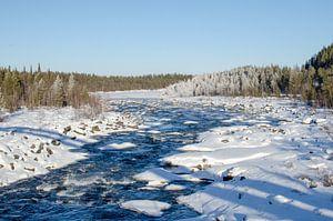 Winterse sferen bij de rivier in Zweeds Lapland