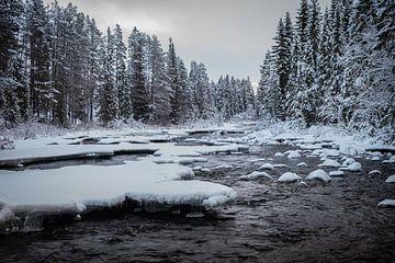 Snowy River. van Marco Lodder