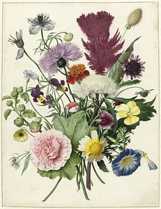 Boeket bloemen op witte achtergrond van