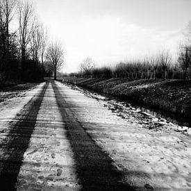 Halfbesneeuwd natuurgebied van angela de baat